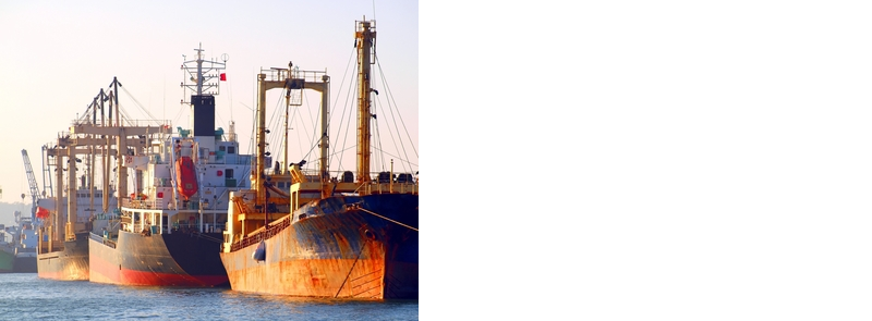 Affordable solutions for all your ocean shipments